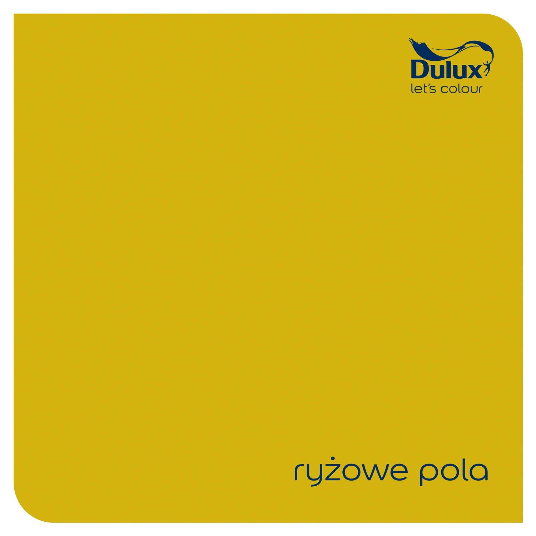 Dulux Emulsja Easycare Kuchnia I łazienka Ryżowe Pola 25 L