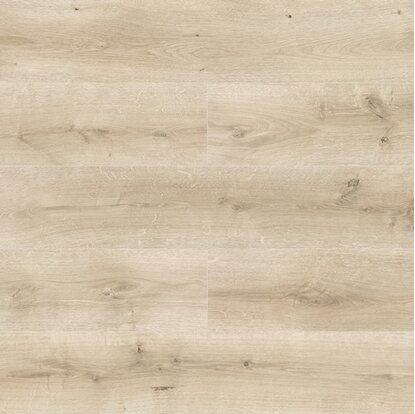 Panel podłogowy Dąb Loretta 10 mm AC 5