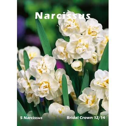 Narcyz Bridal Crown 5szt