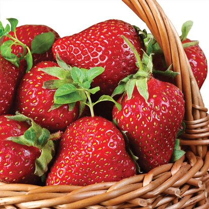 Serwetki  Strawberry Basket 33 cm x 33 cm marki Ceramik