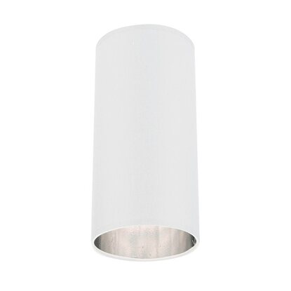 TK Lighting Plafon Tube 1x60 W E27