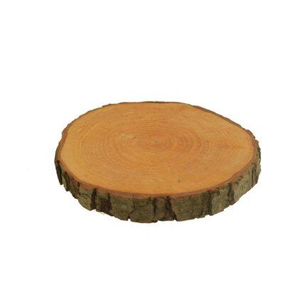 Plaster drewna mały