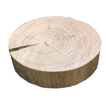 Krążki drewniane sosnowe 3,2x10-20 cm
