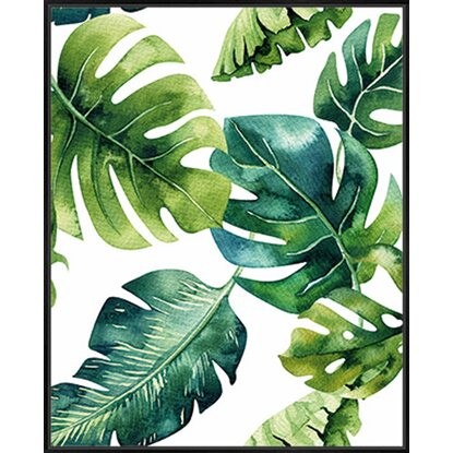 Knor Obraz Shadow Monstera 40 cm x 50 cm
