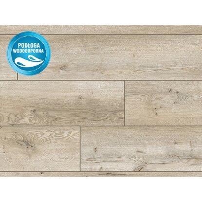 Classen Panel podłogowy Dąb Waldorf 12 mm AC 5